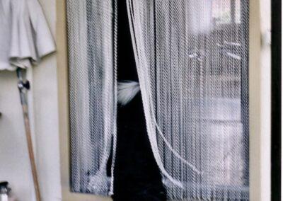 Un cane passa la tenda antimosche krismar senza problemi, dopo un breve periodo di adattamento. Se la tenda si sporca a causa del passaggio regolare di animali domestici, può essere facilmente pulita.